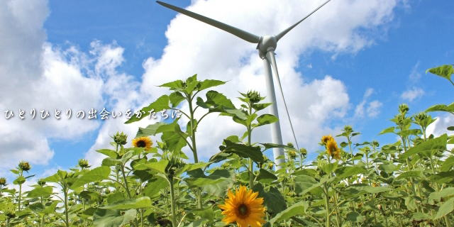 布引高原 風力発電
