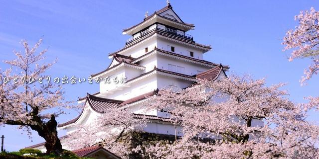 会津若松城と桜